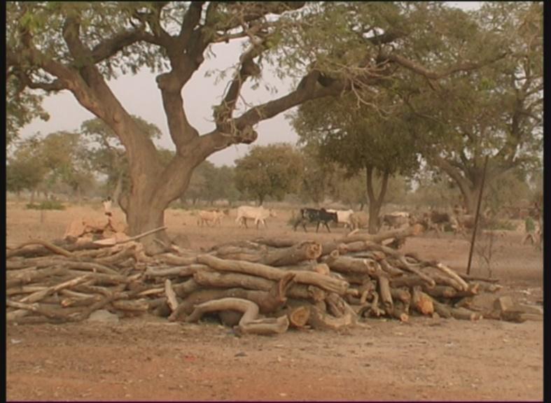 Burkina Faso – Zwischen gestern und morgen 09
