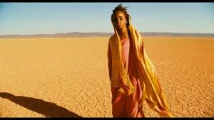 Wüstenblume - Still